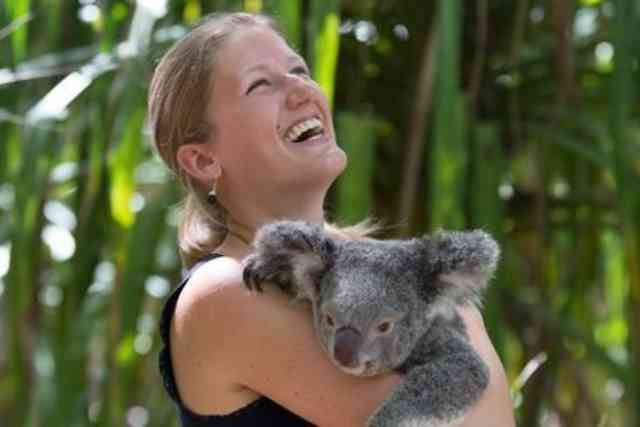 Koala Sanctuary 2hr Tour