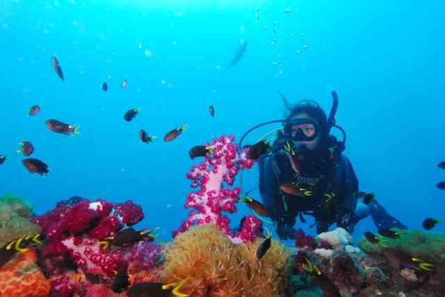 Adrenalin Dive - Yongala Wreck